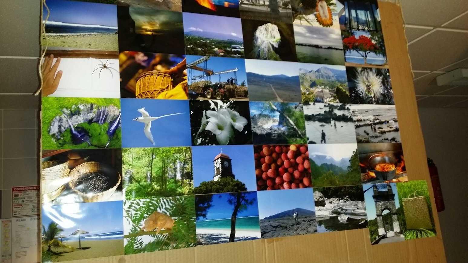 La Réunion: exposition dans le hall E 0