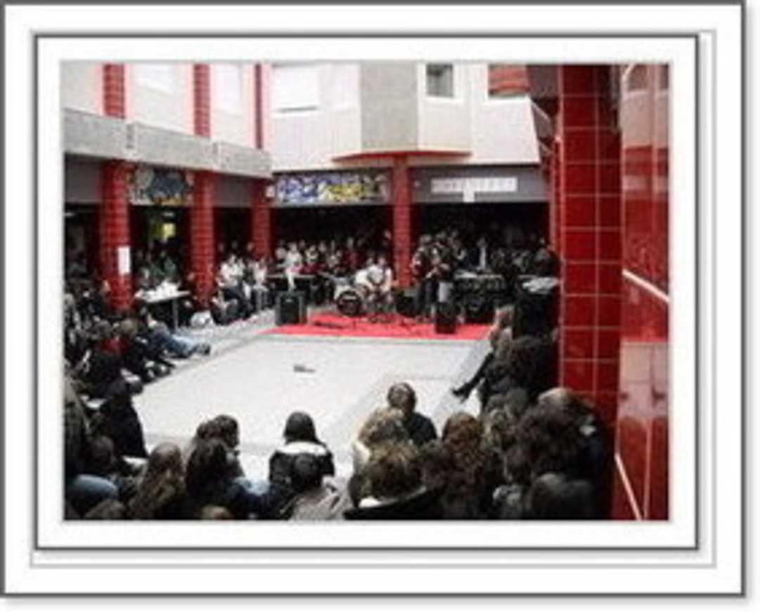 Un festival rock organisé par des handicapés mentaux et des lycéens 0