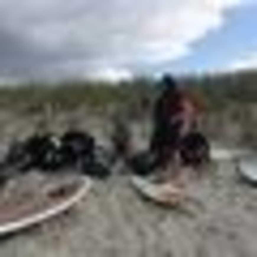 UNSS surf 60pxphoto201