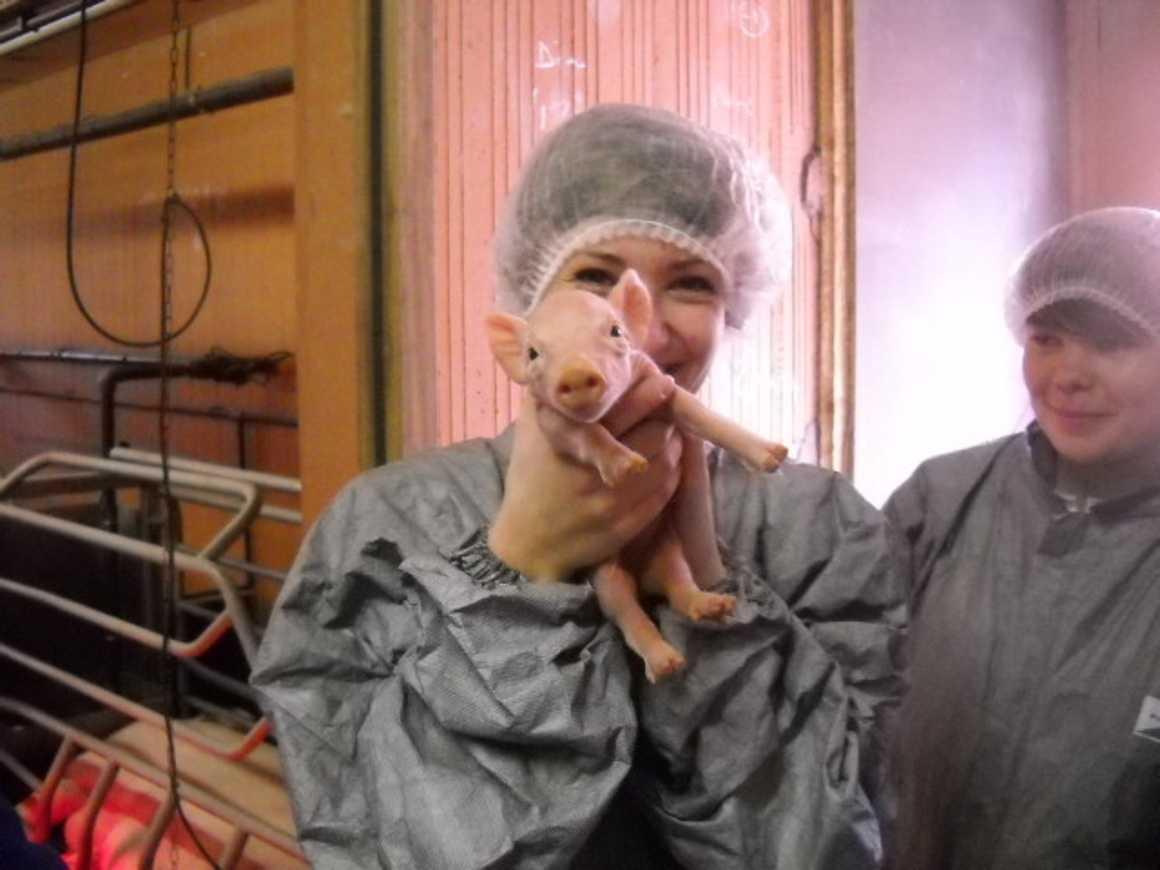 Les 1S3 ont visité un élevage de porc et la station de traitement des effluents 0