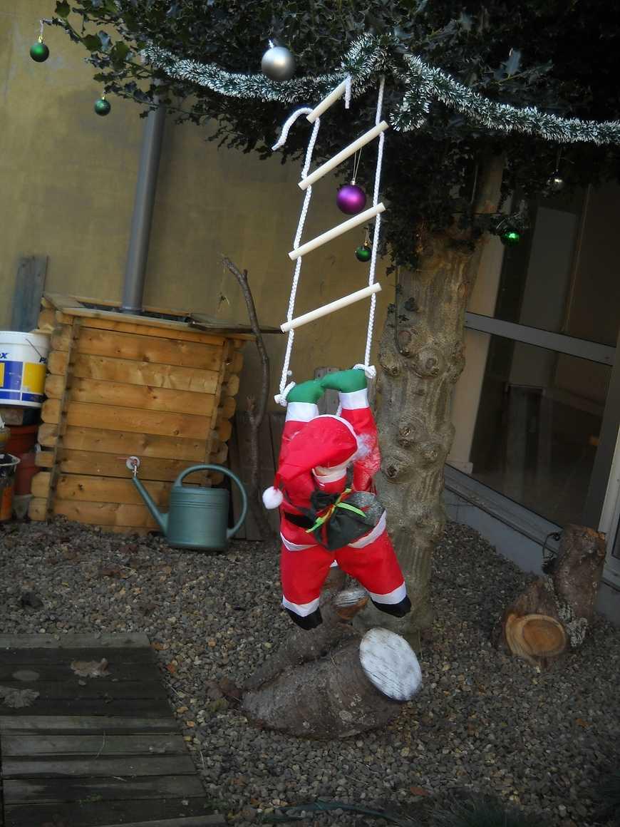 Un Noël mouvementé dans le Patio dscn3510