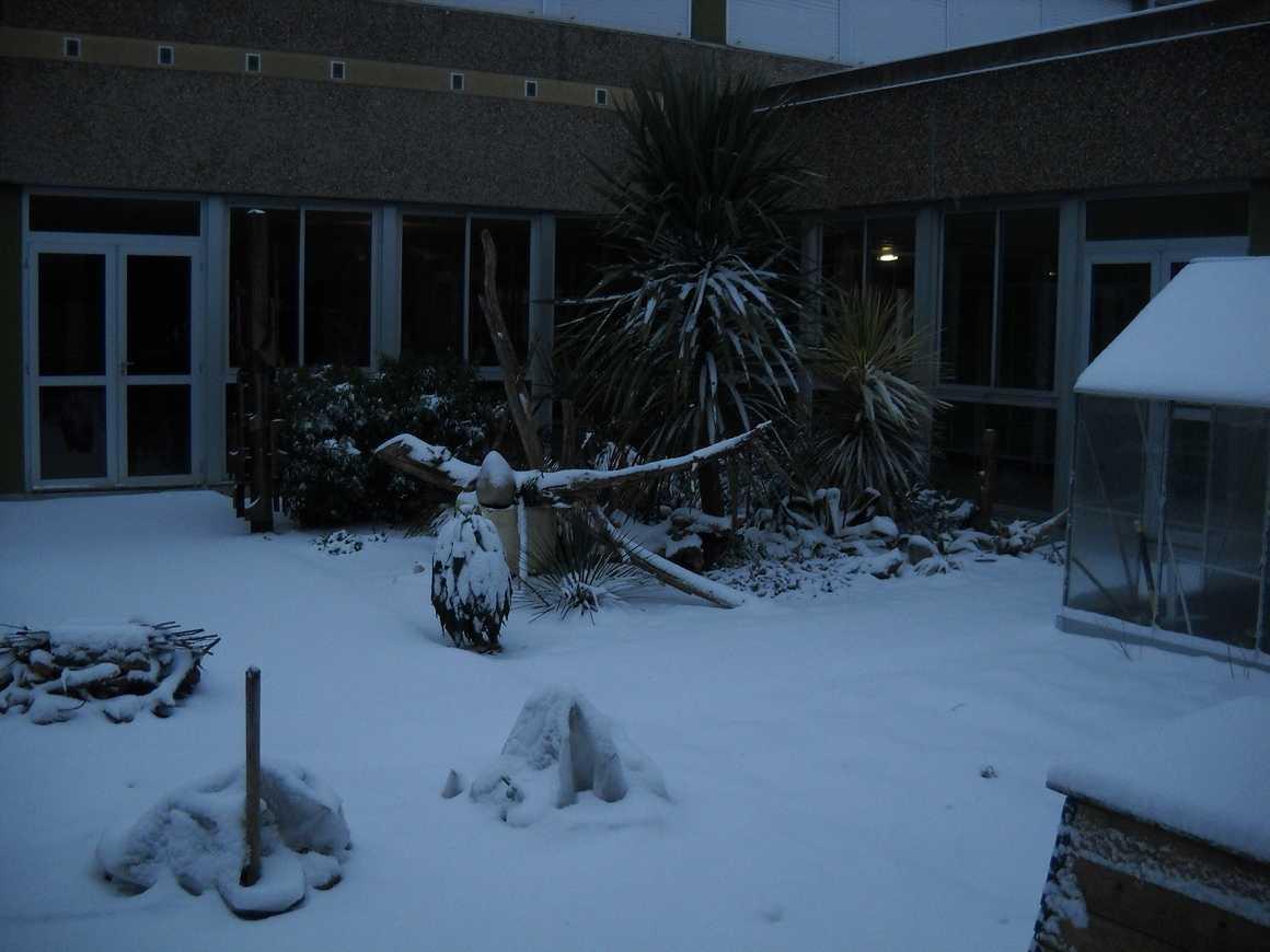 Le lycée sous la neige dscn3662