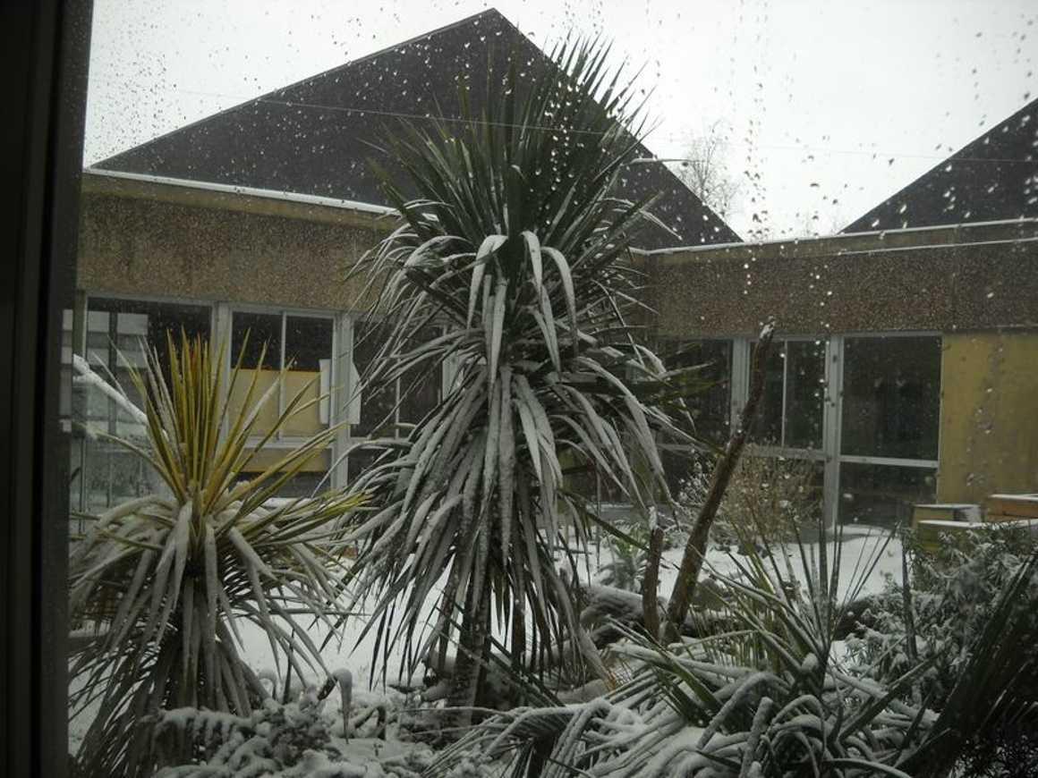 Le lycée de nouveau sous la neige : reportage photo dscn3854