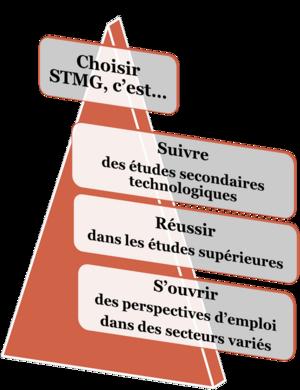 Présentation de la série STMG Sciences et Technologies du Management et de la Gestion