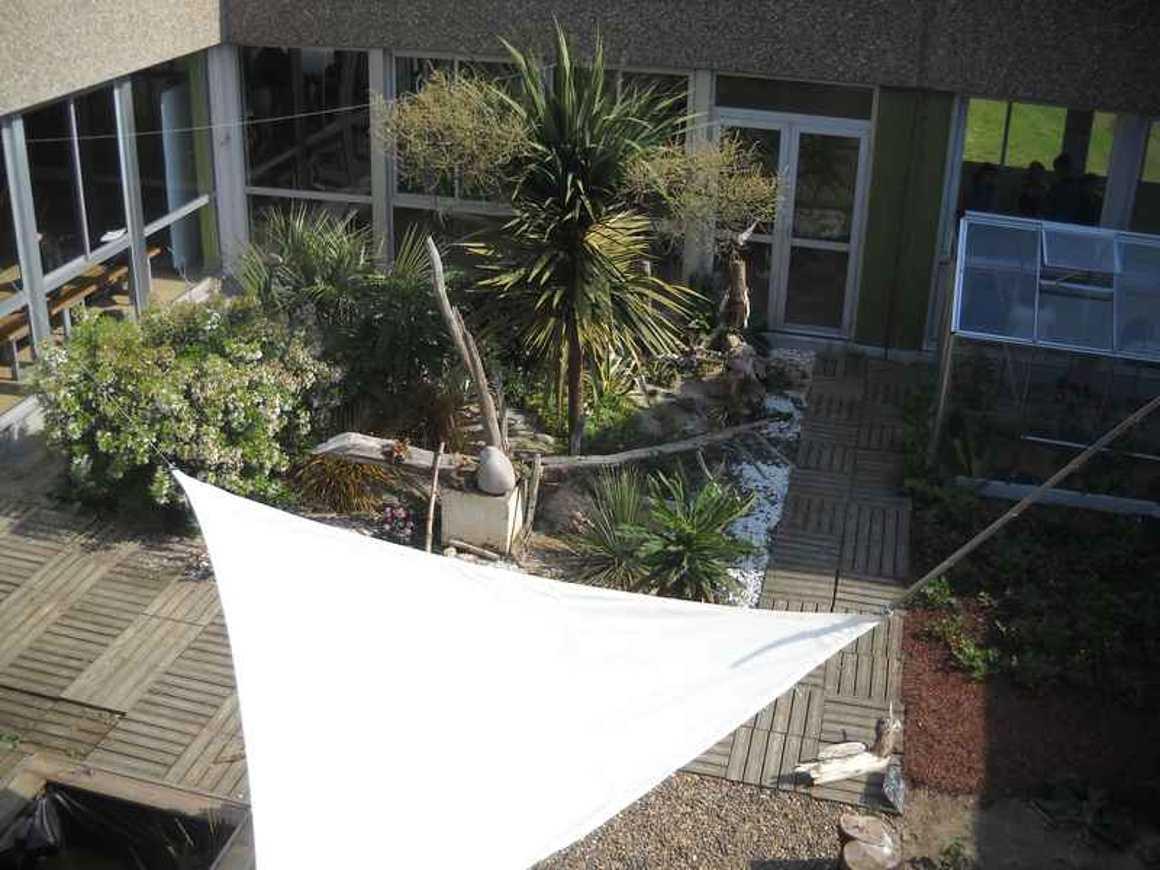 Avec patience, le patio avance.. dscn4568