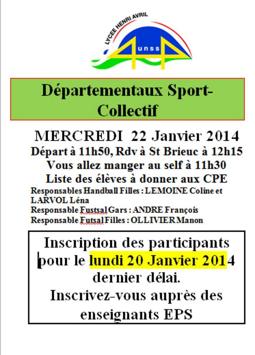 UNSS : Départementaux sport collectif le 22 janvier 0