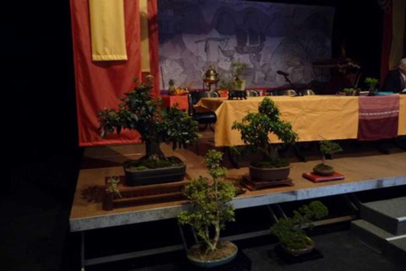 Conception de décors pour la fête du Têt organisé par l''association Côtes d''Armor Vietnam. jan068