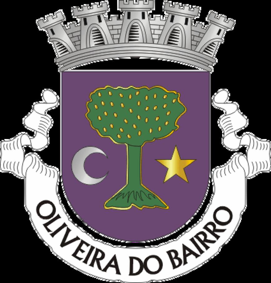 Bien arrivés à Oliveira do Bairro 0