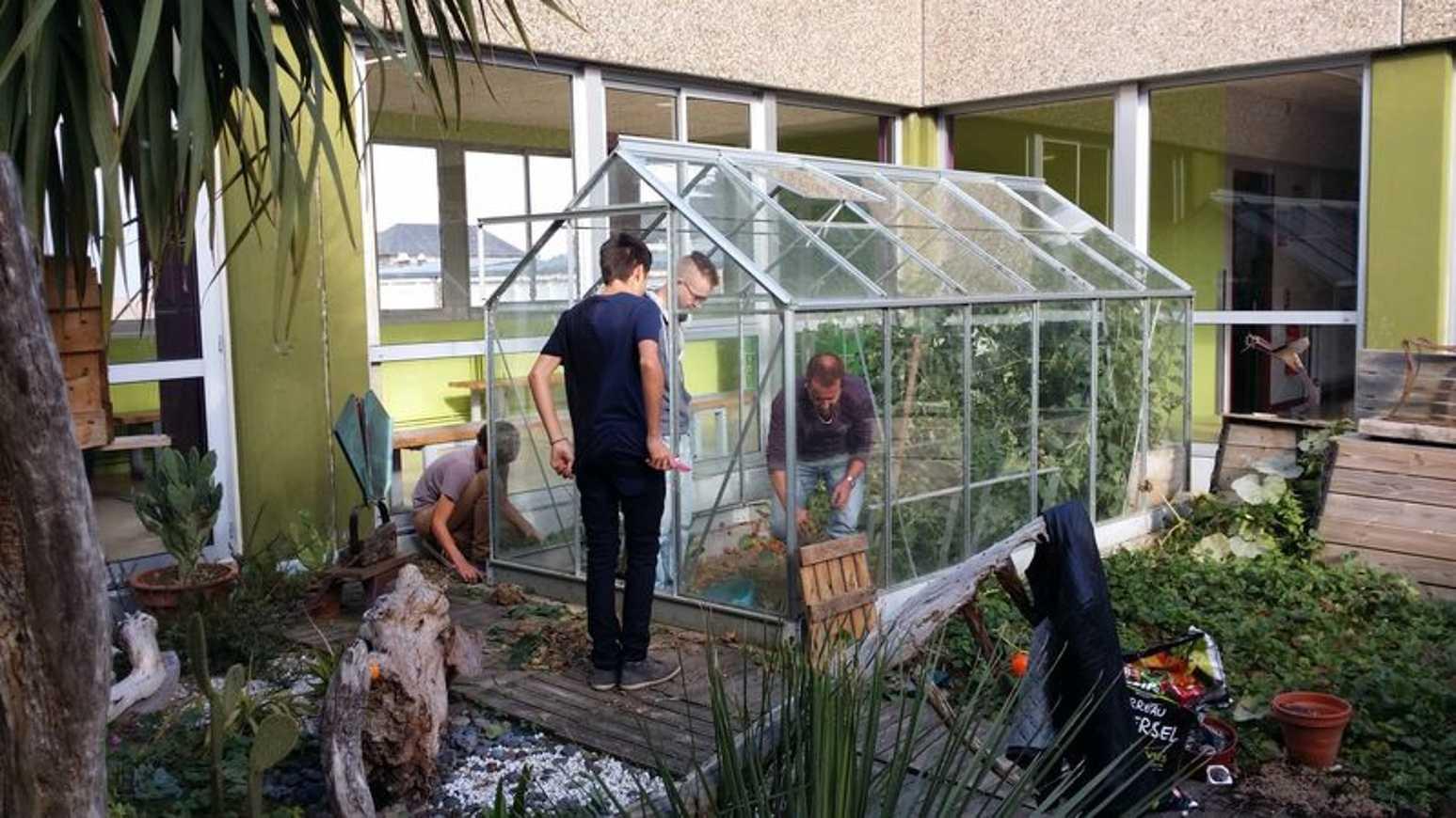 Nettoyage du patio et plantations d''automne 2014-10-0716.46.09