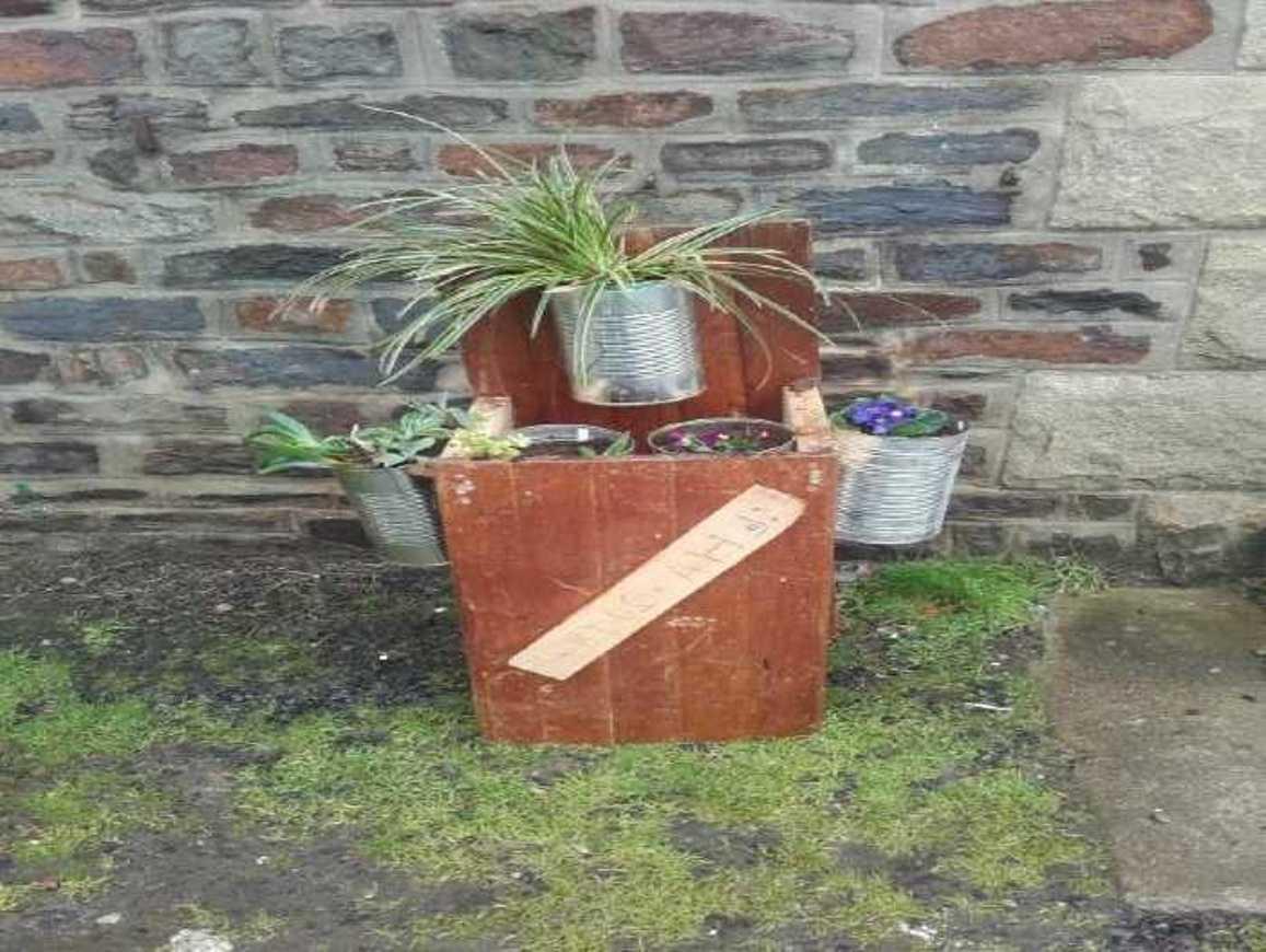 Des jardinières particulières... suite jardiniere4