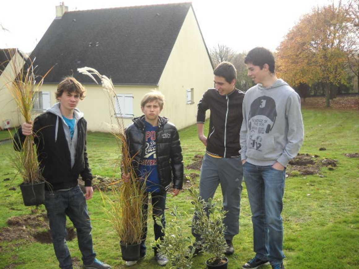 Des plantations au lycée 0