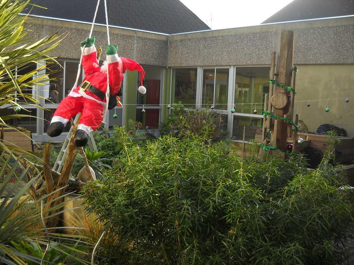 Un Noël mouvementé dans le Patio dscn3503