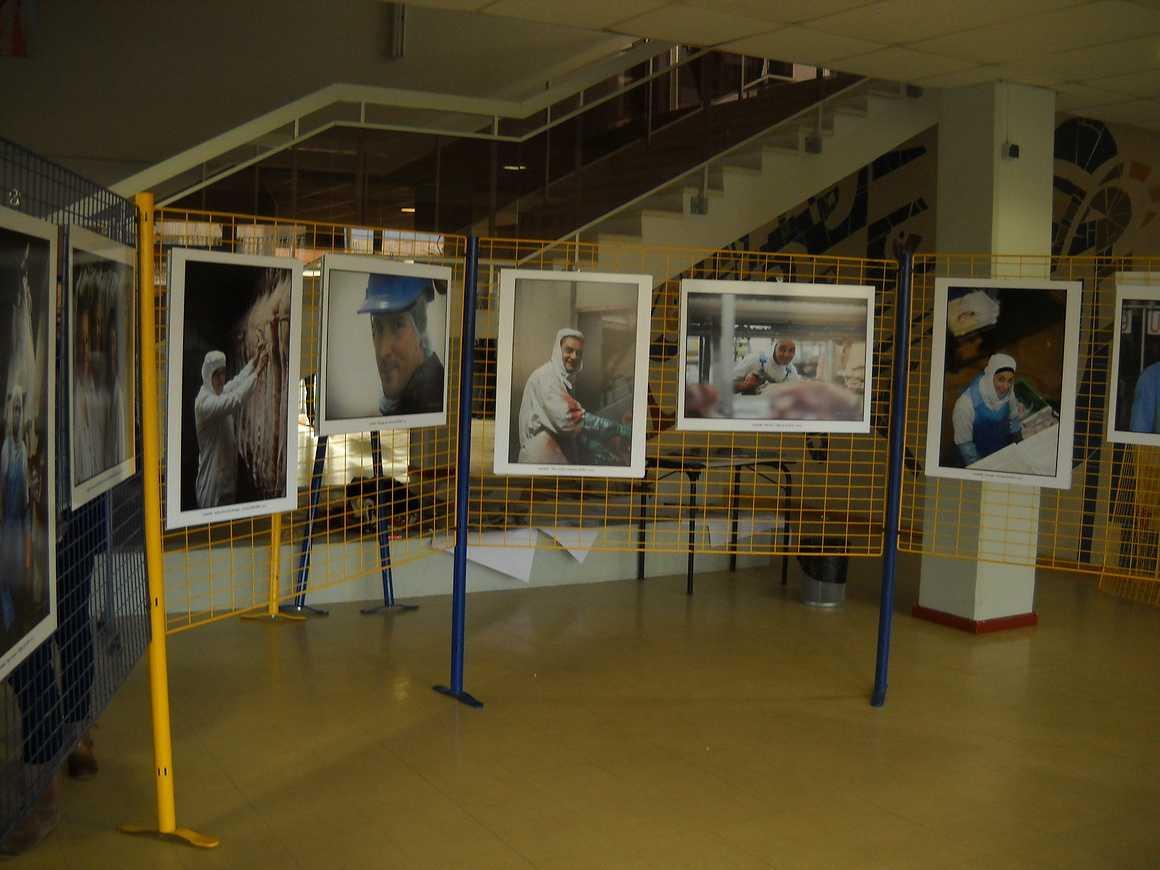 Les employés de la Cooperl photographiés par Sacha Drouart dans l''Agora dscn3733